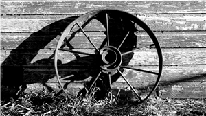 Black & White Wagon Wheel